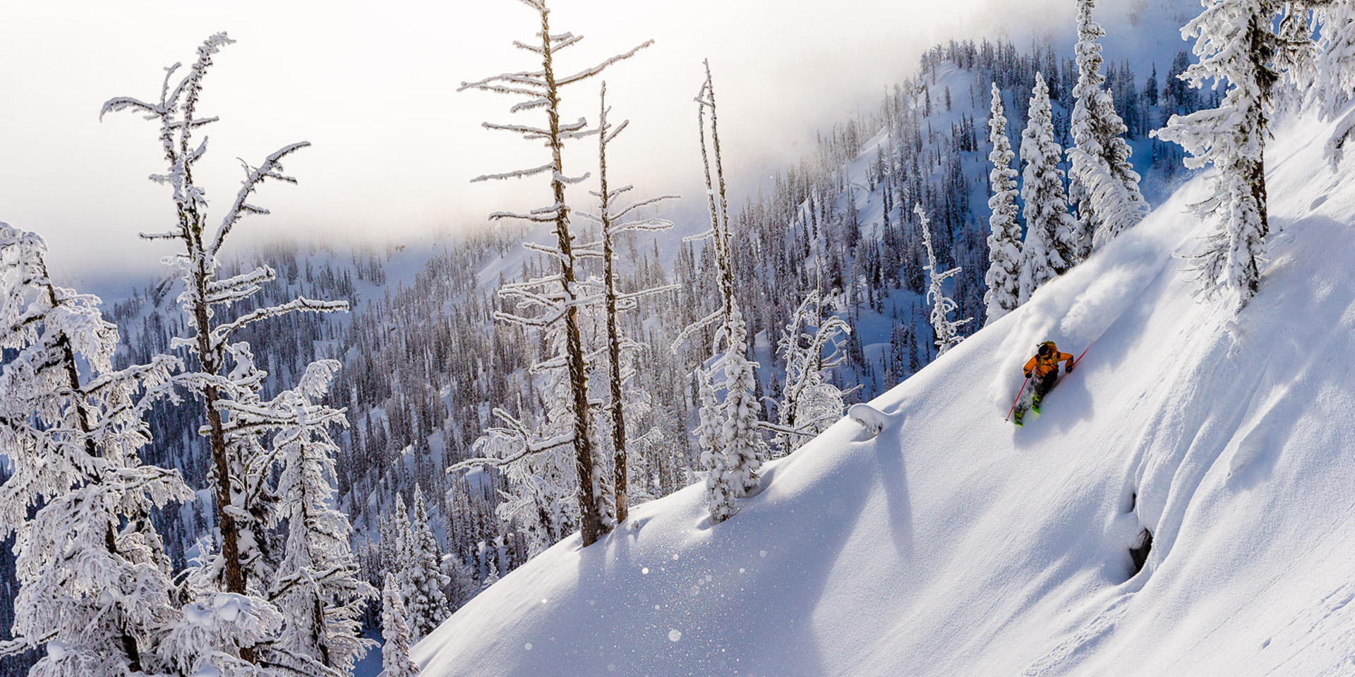 Deep, Light, Kootenay Pow